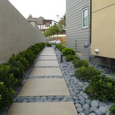 Mexican Moon Pebbles — Seattle Home side yard Design Ideas, Pictures, Remodel and Decor @Priscilla Patrick Chomko