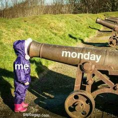 Funny Picture Of The Day – Life vs. Monday