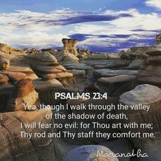 #Psalms 23:1-6 (KJV)  The LORD is my shepherd; I shall not want. He maketh me to lie down in green pastures: he leadeth me beside the still waters. He restoreth my soul: he leadeth me in the paths of righteousness for his name's sake. Yea, though I walk through the valley of the shadow of death, I will fear no evil: for thou art with me; thy rod and thy staff they comfort me. Thou preparest a table before me in the presence of mine enemies: thou anointest my head with oil; my cup runneth…