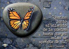Presente Consciente: La calma de la Piedra.