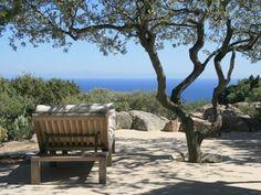 #Tizzano en Corse
