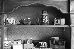 photo cameras colection