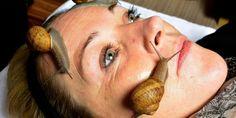 Slizká péče pro sametovou pleť: Hlemýždi na vaší tváři
