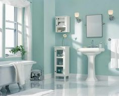 Bathroom Idea Paint Color