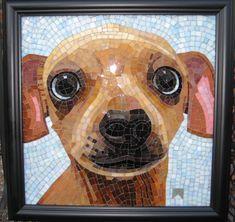 sundog mosaics