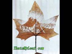 Leaf Art Pojects & Fall Leaf Craft:  Leaf carving art