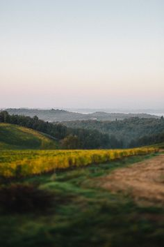 ...to hills that undulate with color and texture...