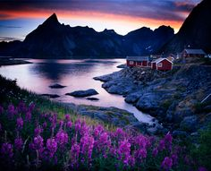 Beautiful shot of one of the islands in Norway.