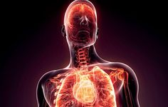 The Invisible Health Condition Behind Everything From Heart Disease To Erectile Dysfunction