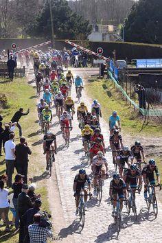 Paris Roubaix 2015