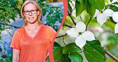 Johanna Antonsson får utmärkelsen Årets Trädgård 2020. Garden Plants, V Neck, Design, Women, Nature, Fashion, Moda, Fashion Styles, Design Comics