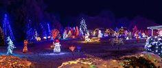 #Traumhaft #magische #Weihnachtsbeleuchtung ➡ ➡ ➡ https://www.amazon.de/s/ref=as_li_ss_tl?__mk_de_DE=%C3%85M%C3%85%C5%BD%C3%95%C3%91&url=search-alias=aps&field-keywords=Weihnachtsbeleuchtung&rh=i:aps,k:Weihnachtsbeleuchtung&linkCode=sl2&tag=wohn-21&linkId=89006c30295d1b4b34bc9afdd601abf0