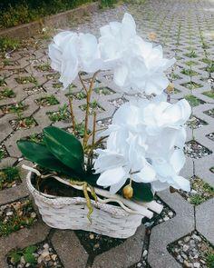 Storczyk wykonałam ze wstążki satynowej. Pomysł własny. http://www.sztukacodziennosci.pl