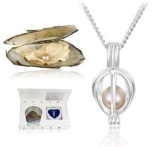 7/5/2012  $9.99 Harvest Your Own Pearl From an Unopened Clam Shell - Wear It Encased in a Silver-Plated Locket