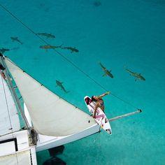 This week's #ROXYDARES with Surfline.com