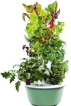 Juice Plus Hydroponic Garden https://donaldc.towergarden.com/
