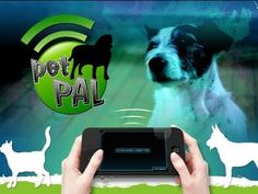 Pet Pal - iPhone application for animal lovers - by Gameloft - YouTube