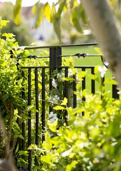 Freshen up railings
