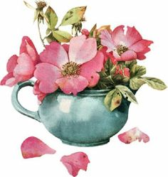 marjolein bastin illustration roses rose
