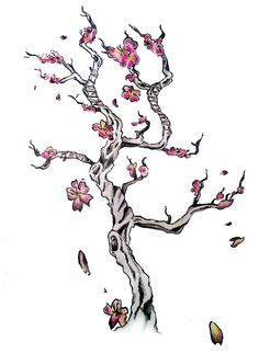 watercolor cherry blossom tattoos | ... engine tags how to draw a cherry blossom…