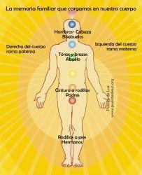 SAIKU ALTERNATIVO: En el cuerpo cargamos a nuestra familia Reiki, Ashtanga Yoga, Health Fitness, Spirituality, Chakras, Namaste, Angels, Homeopathic Medicine, Frases