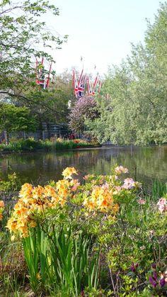 St. James Park, London  http://www.travelandtransitions.com/destinations/destination-advice/europe/