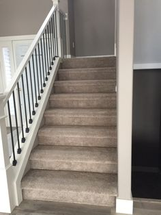 Best Gerard Homes Super Plush Carpet On Stairs In A Bull Nose 400 x 300