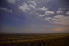 Carolina Fields © Uliana Goncharova on 500 px