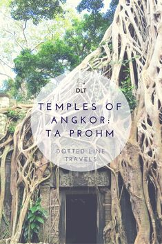 Temples of Angkor: Ta Prohm — Dotted Line Travels