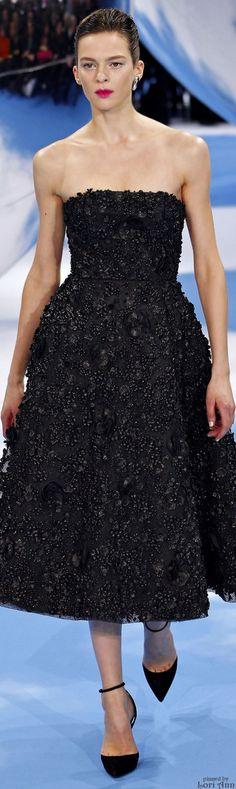 Christian Dior Fall 2013 RTW