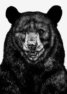 Bear by Sebastian Gomez De La Torre