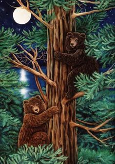 Cathy McClelland   :::   Safe in the Trees