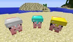 Игра Minecraft в многопользовательских серверах может быстро стать довольно раздражающей. Там нет никакой гарантии Вашей безопасности и от вандализма, другие игроки могутбудут