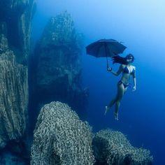 Under My umbrella ☔️ http://www.deepbluediving.org/trash-ocean/