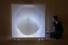 Mona Oren - Wax, Plaster & Paper Sculptures