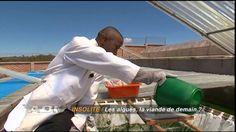 Production locale de Spiruline Antsirabe Madagascar
