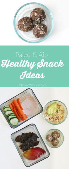 Healthy Homemade AIP & Paleo Snacks on the Go