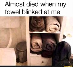 Funny Animal Meme Dump 27 Pics memes for women about men Funny Animal Meme Dump 27 Pics Funny Animal Jokes, Stupid Funny Memes, Cute Funny Animals, Funny Relatable Memes, Haha Funny, Funny Animal Pictures, Funny Cats, Animal Humor, Funny Stuff