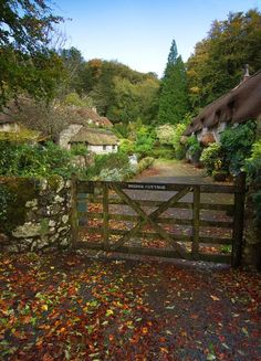 Buckland in the Moor, Dartmoor, Devon, England