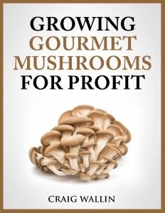 The popularity of gourmet mushrooms is growing fast, as more and more folks discover the great taste and health benefits. In fact, almost ten million pounds of oyster and shiitake mushrooms were sold in the U.S. last year. In Europe and Asia, mushrooms are much more widely grown and eaten, but Americans are catching up. …