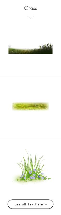 """Grass"" by mlkdmr ❤ liked on Polyvore featuring grass, flowers, plants, effects, greenery, filler, backgrounds, fences, garden and effect"