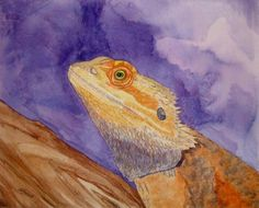 Watercolour Bearded Dragon By Mandy Kennell