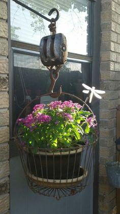 Egg basket and pulley plant hanger