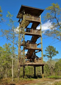 Play Houses, Bird Houses, Hunting Stands, Brick Bbq, Tree House Plans, Pole House, Lookout Tower, Deer Hunting Blinds, Photography Sites