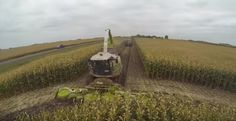 Chopping Silage at East Dublin Dairy. Video at the silage pile done by Jason from Degelman. The music is the song Archangel by Two Steps From Hell. Two Steps From Hell, Modern Agriculture, Archangel, Dublin, Farmer, Tractors, Coloring Pages, Dairy, Country Roads