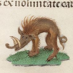 Smiling wild boar, book of hours, Bruges or Ghent century (Beinecke Rare Book and Manuscript Library, MS fol. Medieval Life, Medieval Art, Illuminated Letters, Illuminated Manuscript, Medieval Paintings, Medieval Tapestry, Book Of Hours, Bizarre, Medieval Manuscript