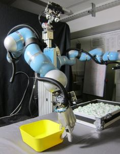 "'Boris' the robot can load up dishwasher |   A robot unveiled today at the British Science Festival will be loading dishwashers next year, its developers claim. ""Boris"" is one of the first robots in the world capable of intelligently manipulating unfamiliar objects with a humanlike grasp."