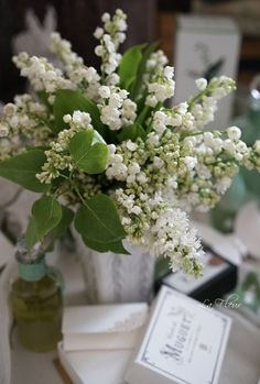 May Flowers, Little Flowers, Beautiful Flowers, Wedding Bouquets, Wedding Flowers, Lily Of The Valley Flowers, Language Of Flowers, Calla Lily, Belle Photo