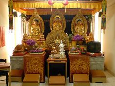 judith gap buddhist personals Funplex ethnic jewish toggle navigation  at stores like the gap  little judith's mum says to her,.