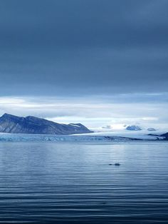 Svalbard, Norway - ….Stay cheap and comfortable on your stopover in Oslo: www.airbnb.com/rooms/1036219?guests=2&s=ja99 and https://www.airbnb.no/rooms/10188728